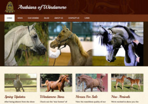 Arabians of Windamere